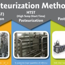 Pasteurization: The Basics
